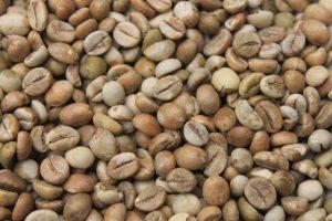 Fine Robusta Green Bean
