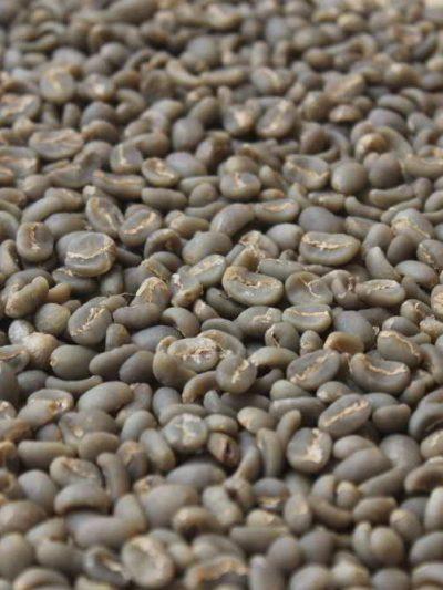 Linthong Green Bean